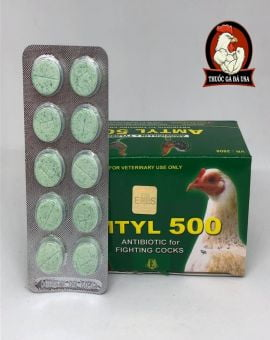 AMTYL 500 CHO GÀ ĐÁ - HỘP X 100 Viên